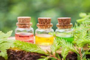 Рослинні олії для догляду за обличчям